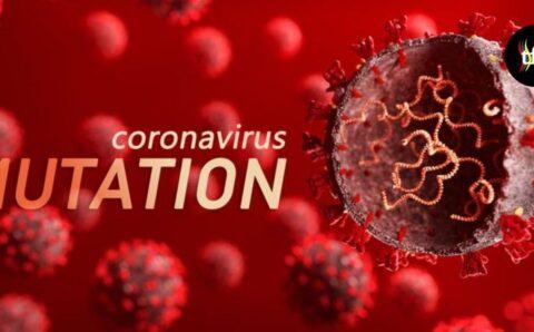 Mutasi COVID-19 : Virus Varian Mahiadin